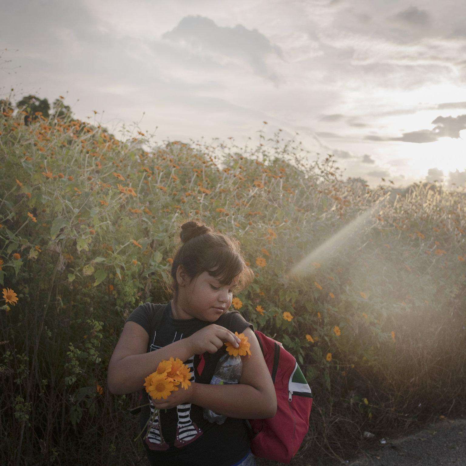 Tapanatepec, 2019. április 12. A World Press Photo Alapítvány által közreadott, 2018. októberben készített képen az Egyesült Államokba igyekvő közép-amerikai illegális bevándorlók közé tartozó lány virágot szed a mexikói Tapanatepec és Niltepec közötti 50 kilométeres gyaloglás közben. A fénykép a svéd-holland Pieter Ten Hoopen A migránskaraván című munkájának része, amellyel elnyerte a 2018-as Év Fotóriportja díjat a World Press Photo nemzetközi sajtófotóversenyen 2019. április 11-én. MTI/EPA/Pieter Ten Hoopen