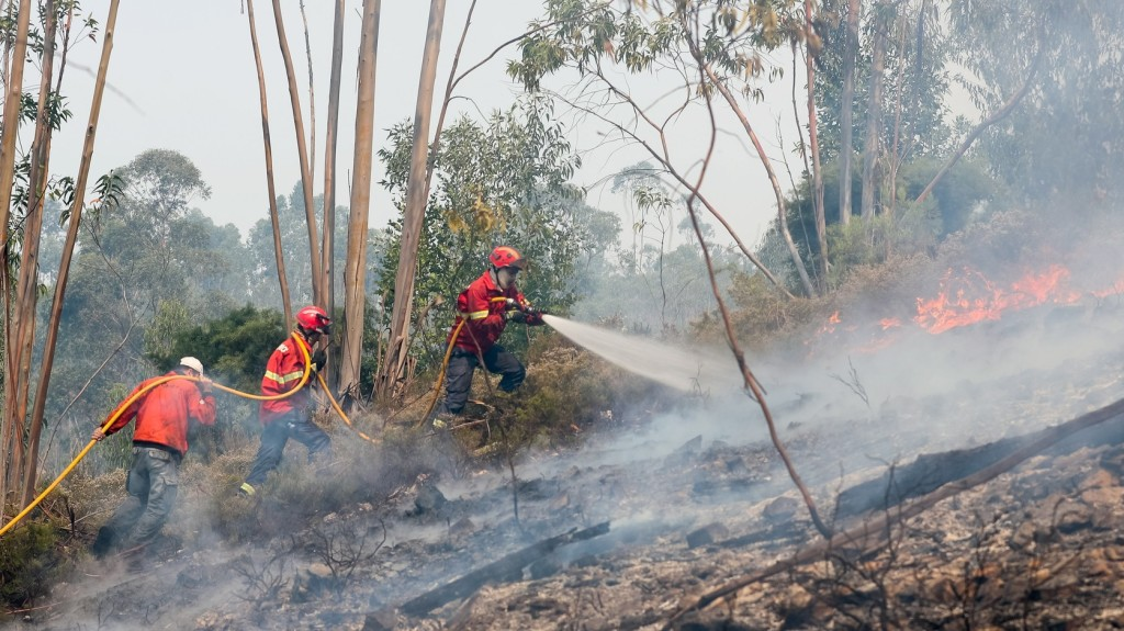 Őrizetbe vett egy férfit a portugál rendőrség, aki az erdőtüzeket okozhatta