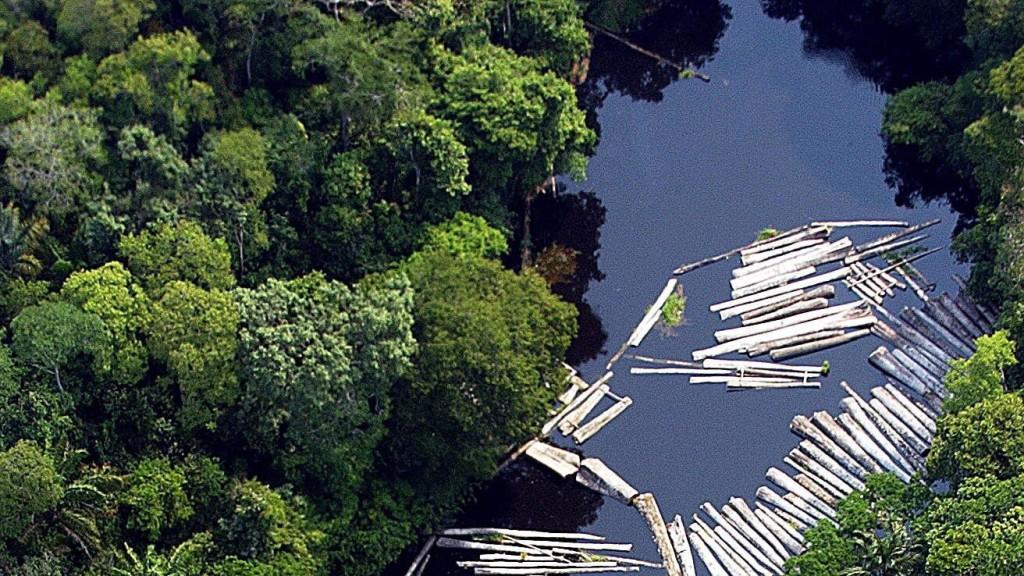 Több mint 70 ezer tüzet észleltek az Amazonas vidékén
