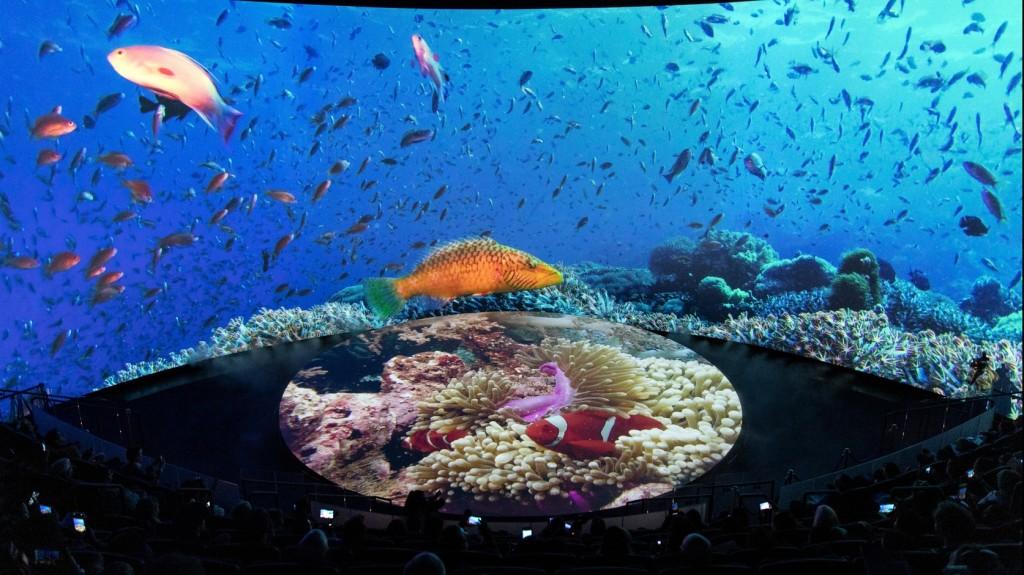 Megnyílt a világ legmagasabban fekvő akváriuma Kínában