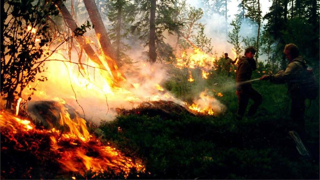 Oroszországban az erdőtüzek eddig százötmillió dollár kárt okoztak