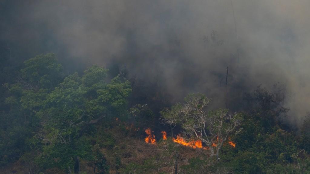A bolíviai elnök meghívta a G7 vezetőit, hogy segítsenek az amazóniai erdőtüzek oltásában