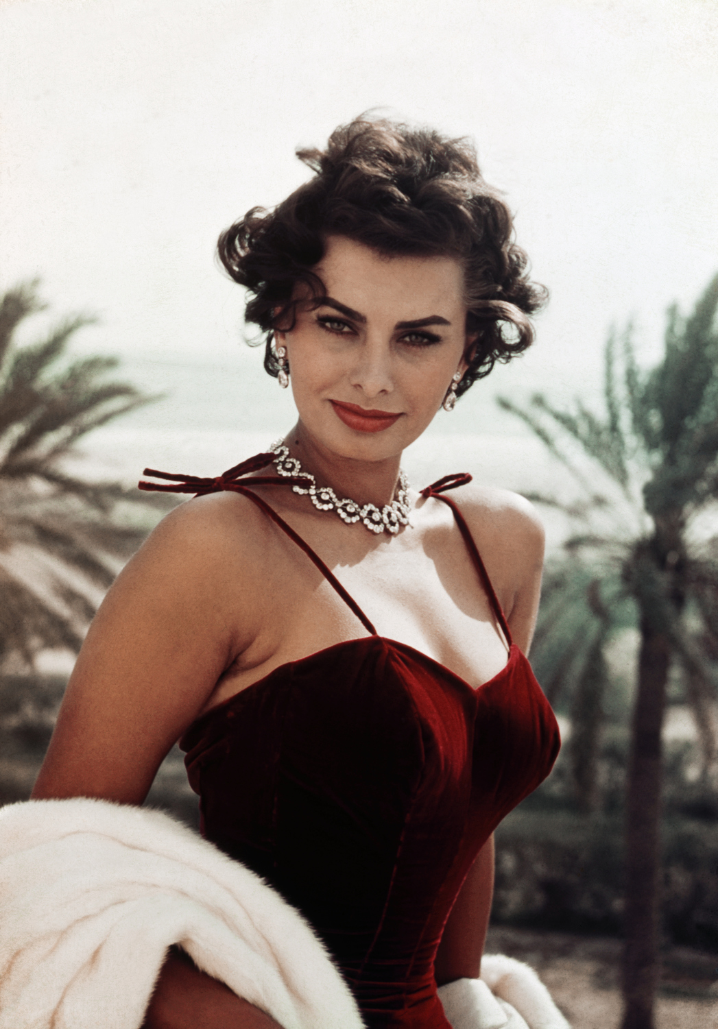 Sophia Loren (Fotó: Getty Images)