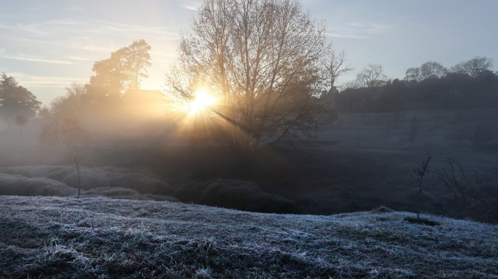 A héten érkezhetnek az első őszi talajmenti fagyok