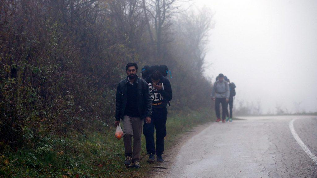 Ismét nő a migránsok száma a szerb-magyar határ közelében