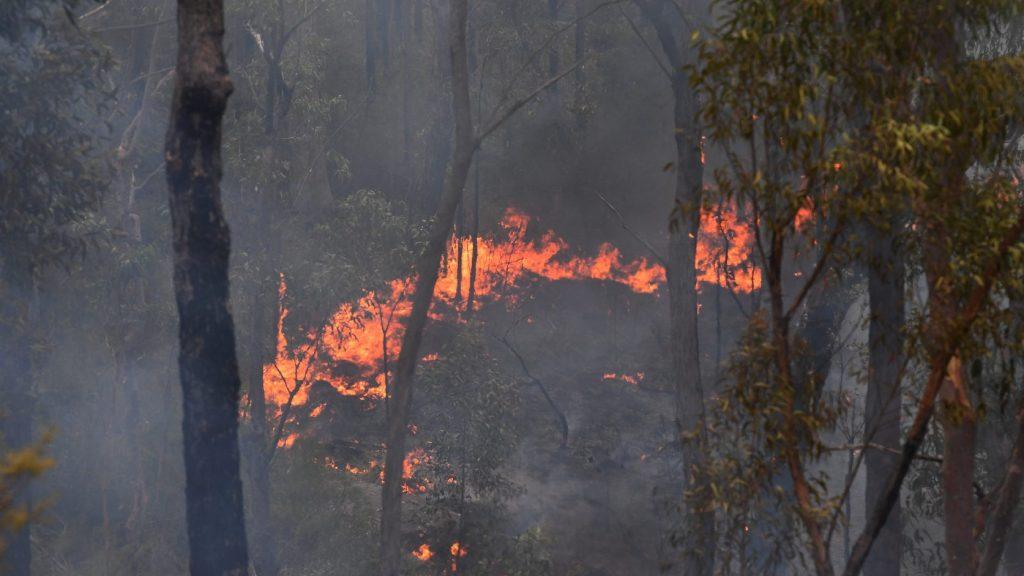Irdatlan hőséggel és bozóttüzekkel küzdenek Ausztráliában