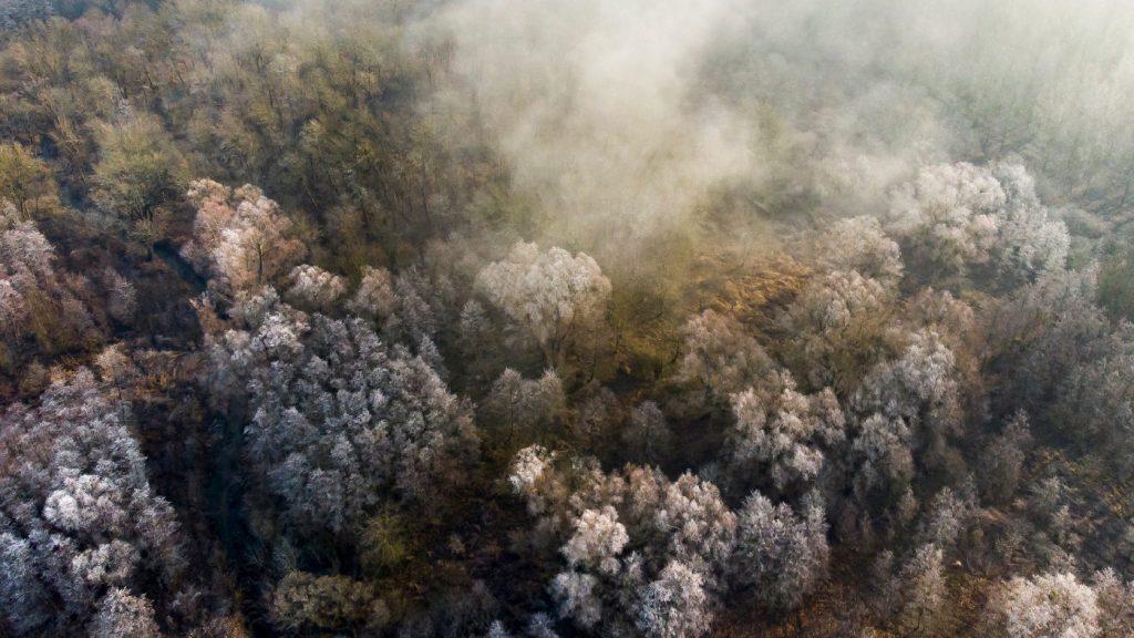 Csapadékra, szélre és ködre is figyelmeztet a meteorológiai szolgálat