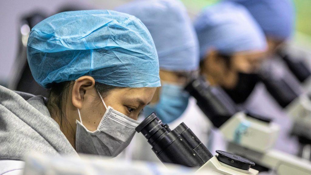 WHO: Egyre kevesebb az idő a nemzetközi járvány megfékezésére