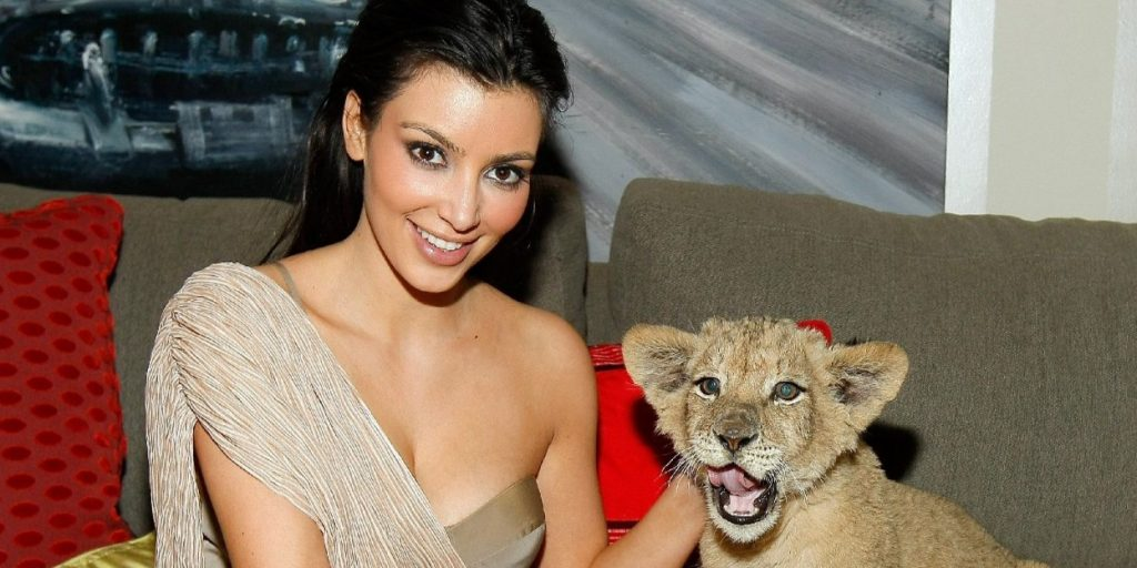 Hivatalosan is betiltották: nincs több kisoroszlán és zsiráf a hollywoodi bulikon
