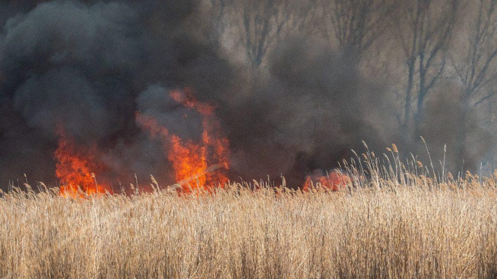 Sok a szabadtéri tűz az országban