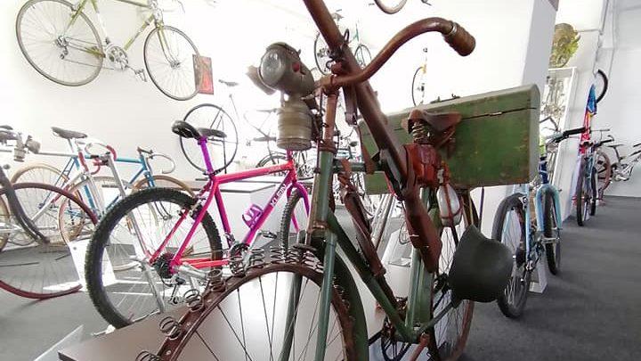 Az embernek az állatok között a kutya, a gépek között a bicikli a legjobb barátja