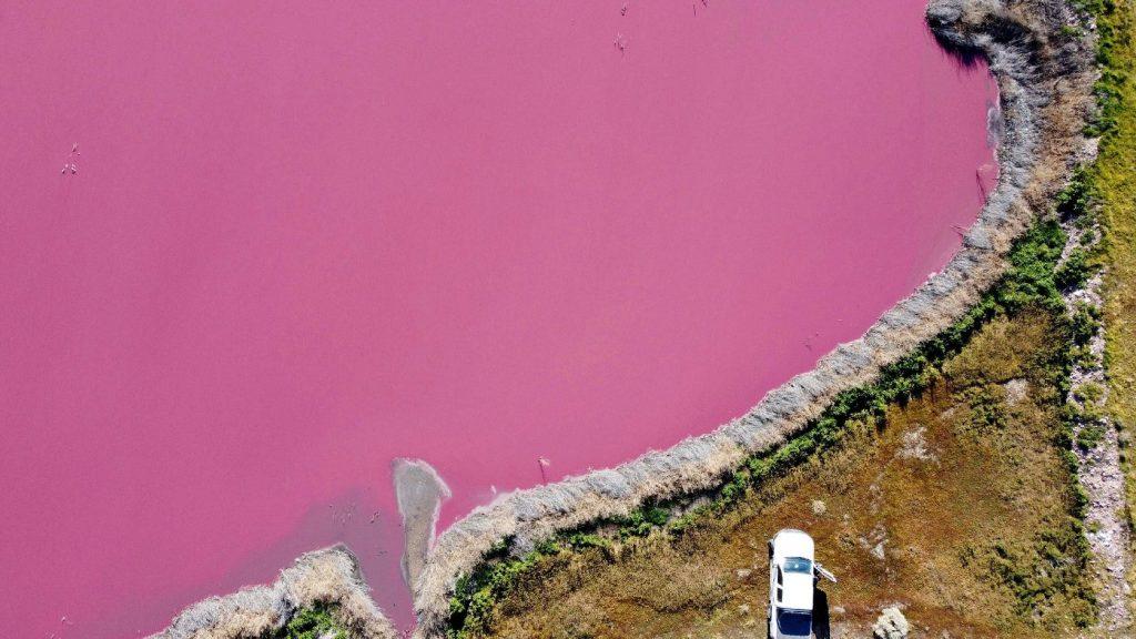 Rózsaszínűvé változott két tó Argentínában